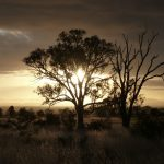 Sunrise Flinders Ranges, South Australia