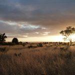 Zonsopkomst Flinders Ranges, Zuid-Australië